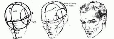 Modeling a Loomis Head in Rhino - WikID, the Industrial Design Engineering  wiki